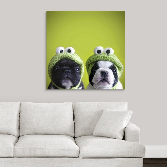 527ff216390c3 Premium Thick-Wrap Canvas Wall Art entitled French bulldogs wearing ...