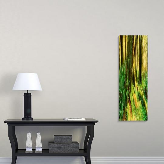 Premium-Thick-Wrap-Canvas-Wall-Art-entitled-Hoh-Rain-Forest-Olympic-Peninsula-WA