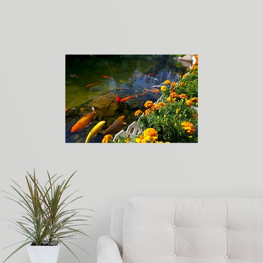 Poster Print Wall Art Entitled Koi Fish Swimming By Flower