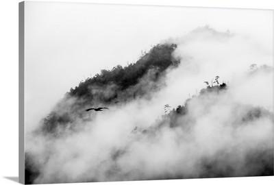 Clouds surrounding Miyajimaguchi mountains, Japan.