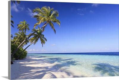 Maldives, Faafu Atoll, Filitheyo Island