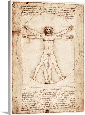Vitruvian Man. 1492. Drawing