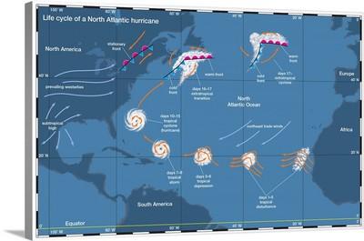 Life Cycle Of A North Atlantic Hurricane. Tropical Cyclone Illustration