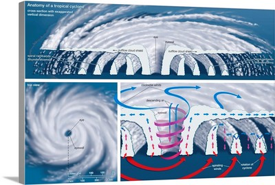 Top View And Vertical Cross Section Of A Tropical Cyclone. Atmosphere Illustration