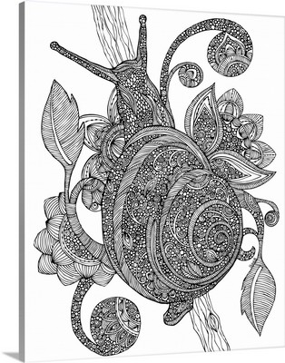 Snail - Black and White