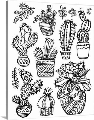 Color Me - Succulents