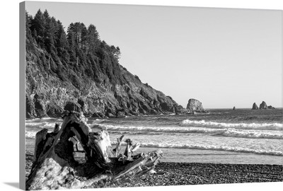 Black and White Landscape at La Push Beach, Washington