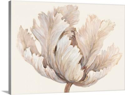 Monochromatic Tulip I
