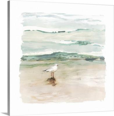 Seagull Cove I