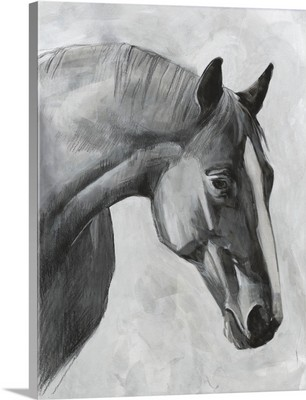 Cavallo I