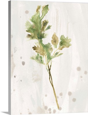 Antique Earthtone Herbs I