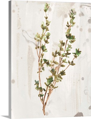 Antique Earthtone Herbs II