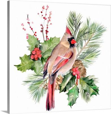 Cardinal Holly Christmas  II