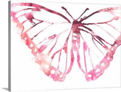 Butterfly Imprint VI