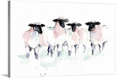 Minimalist Watercolor Sheep II