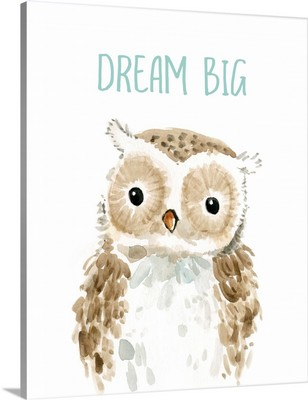 Dream Big Owl