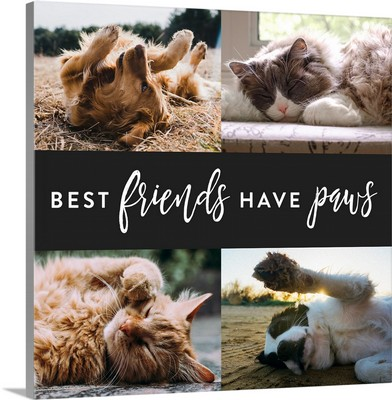 Best Friends Have Paws